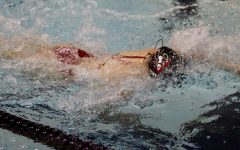Boys diving finds initial success at meets
