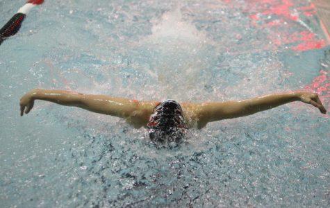 Photo Gallery: Westside v. Prep/Marian Swim & Dive Meet