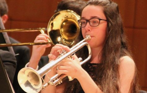 Photo Gallery: Band Day at the Holland