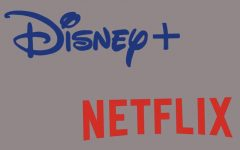 Review: Disney Plus vs. Netflix