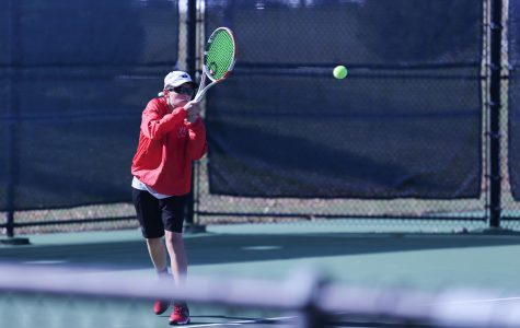 Warriors Boys Tennis Places Third at State, Shefsky a Champion