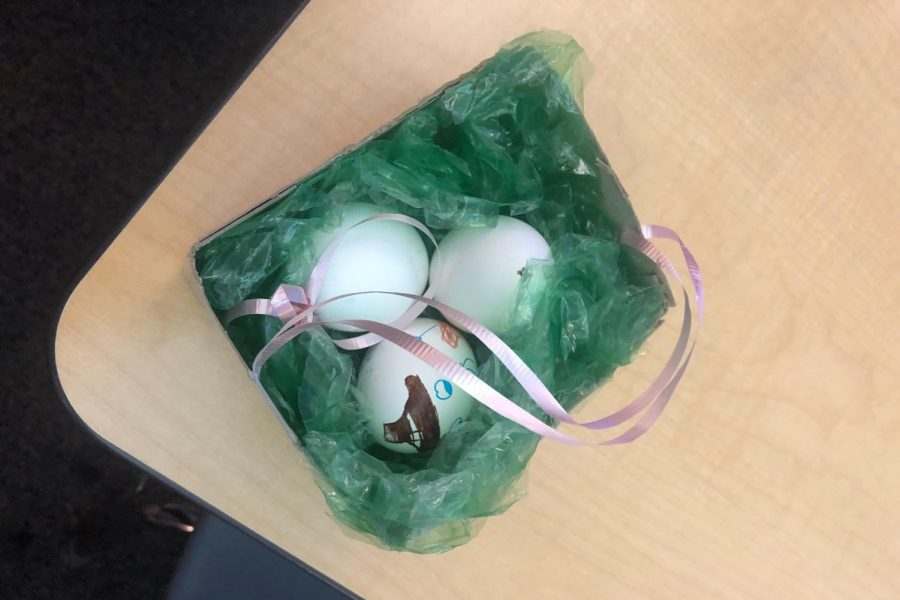 Students in Child Development carry eggs to represent the duties of having a child