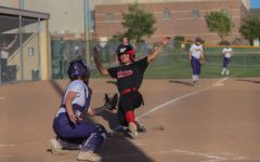 Recap: Softball Reflects on Regular Season