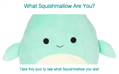 Take this quiz to find out what Squishmallow you are!